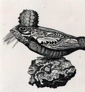 Sue Johnson, Chuck Will's Widow on a Metamorphic Rock,1997, etching on paper.