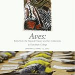Aves exhibition catalog cover